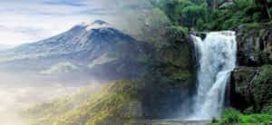 Read more about the article Kintamani and Ubud Tour