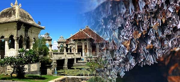 Read more about the article Eastern Bali Tour