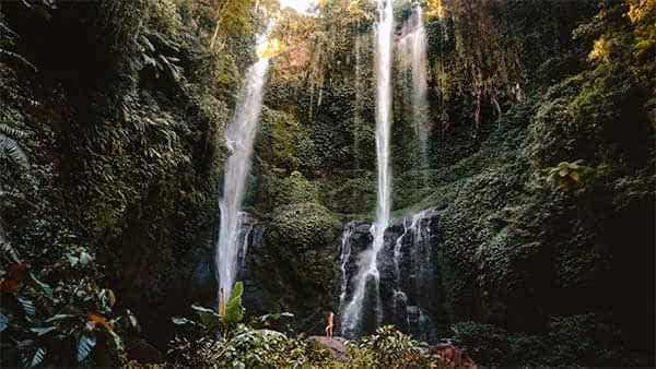 Read more about the article Sekumpul Waterfall Trekking