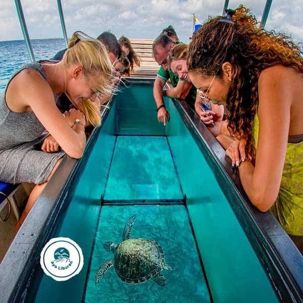 Bali-Glass-Bottom-Boat
