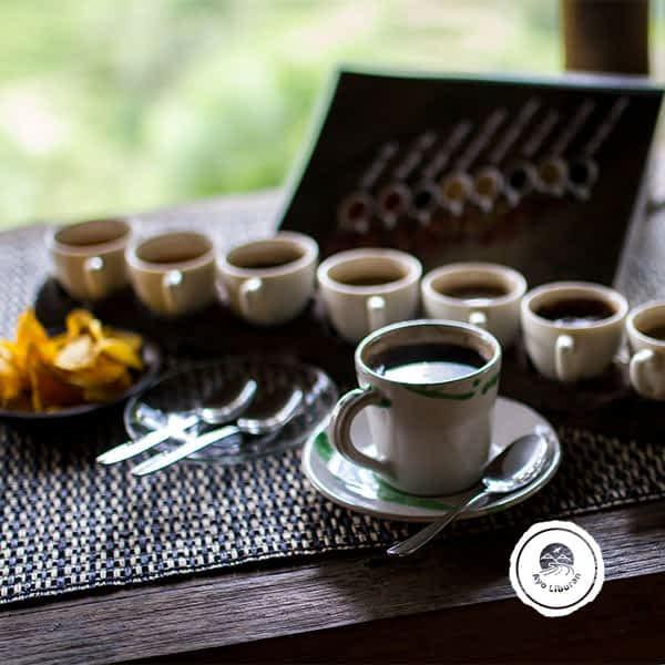 Ayo-Liburan-ke-Bali_Luwak-Coffee