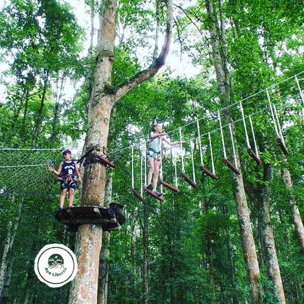 Bali-Tree-Top-Adventure