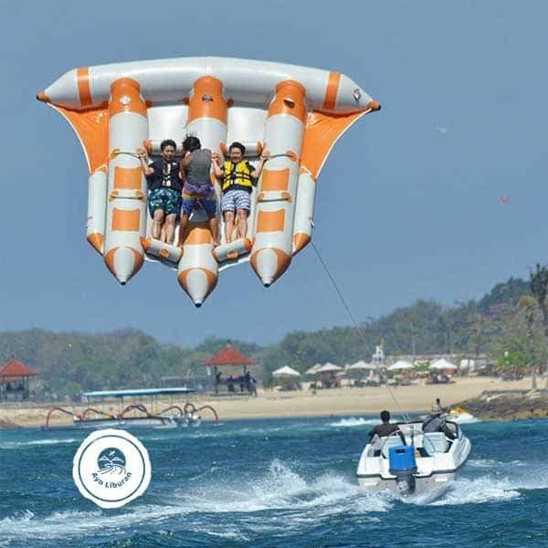 Bali-Fly-Fish